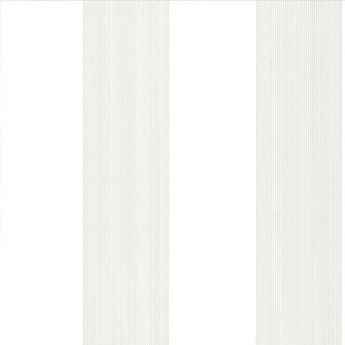 Elephant Stripe - Slip