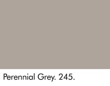Perennial Grey