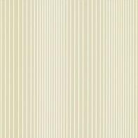 Ombré Plain - Old Gold